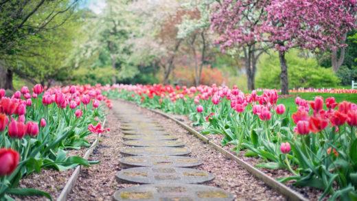 Comment trouver un jardinier